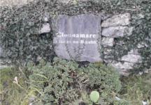 Cloonamarve