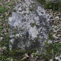 Grave 10 - Coneys | Roger Harrison