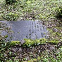 Grave 12 - Lyden | Roger Harrison
