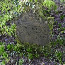 Grave 19 - Burke | Roger Harrison