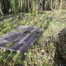 Grave 20 - Lee | Roger Harrison