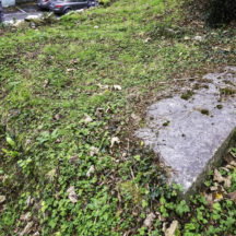Grave 22 - Unknown | Roger Harrison
