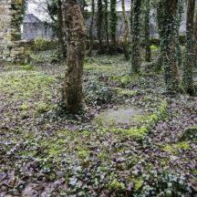 Grave 2 - Unknown | Roger Harrison