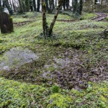 Grave 7 - Unknown | Roger Harrison