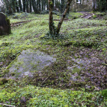Grave 8 - Unknown | Roger Harrison