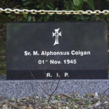 Grave 10 - Colgan | Roger Harrison