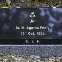 Grave 24 - Feely | Roger Harrison