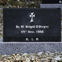 Grave 28 - O'Dwyer | Roger Harrison