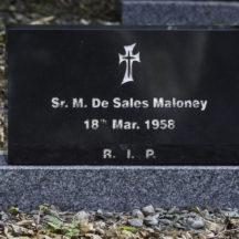 Grave 29 - Maloney | Roger Harrison
