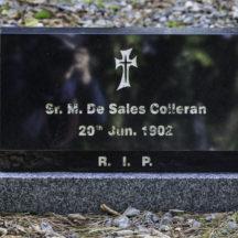 Grave 40 - Colleran | Roger Harrison