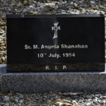 Grave 44 - Shanahan | Roger Harrison