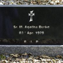 Grave 47 - Burke | Roger Harrison