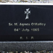 Grave 51 - O'Malley | Roger Harrison
