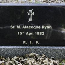 Grave 55 - Ryan | Roger Harrison