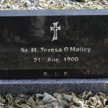 Grave 60 - O'Malley | Roger Harrison