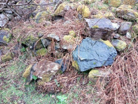 Ruins of Tobarfeheen holy well | Tomas O Flatharta