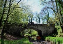 The 'Grand Bridge' in Aughrane Forest, Ballygar