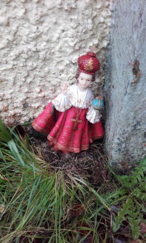 Child of Prague Tuam | Clare Doyle