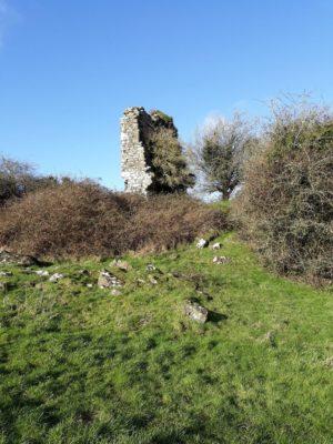 Coolfin Castle   Zena Hoctor