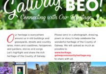 Galway Beo project