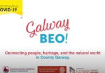 Galway Beo - Video Highlights