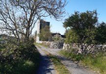 Killeen Castle, Castlegar