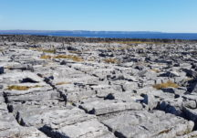 Karst Limestone pavement on Inis Oírr,