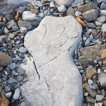 An old milestone in Rinville | Wesley Coyne
