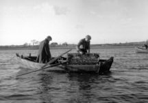 Environment, Cultural, Social and Economic Heritage of the Native Oyster in Galway Bay