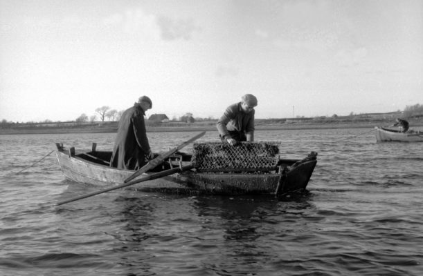 Oyster Dredging from a Galway Bay 'Flat' | Cuan Beo