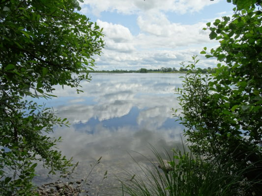 Summerville Lough | Moylough Heritage Society