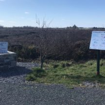 Start of bog walk in Williamstown | Noel Finnegan