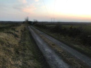 Road in Boggauns   Carmel O'Rourke