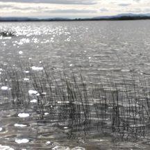 Lough Corrib   J.H., Annaghdown