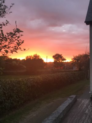 Killeenavara | Daragh Moloney