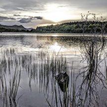 Clonbur waterscape   Gráinne Holleran-Mullins