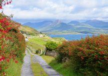 Connemara Laneway Letter More Derryinver