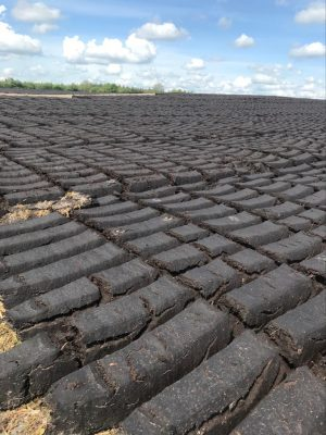 Our turf looks like bars of chocolate | Marka Gilhooley