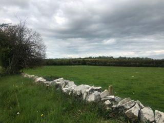 Curraghbog Landscape | Carmel O'Rourke