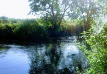The Clare River