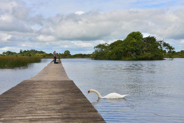 Lough Acalla   Robert Riddell
