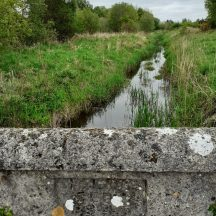 bridge   Geraldine Noone
