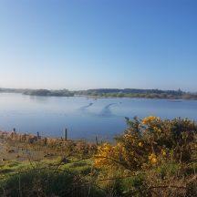 Loch na Lasradh, Lakeview  | Anne Mannion