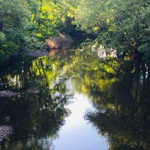 Water reflection | Antoinette Lydon