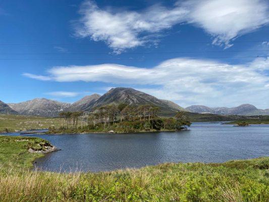 Pine Island | Thomas O'Sullivan
