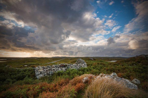 Roundstone Bog   Robert Riddell
