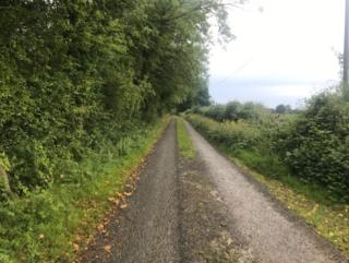 Road in Lisduff | Carmel O'Rourke