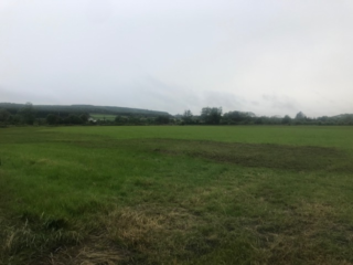 Field in Lahaghglass North | Carmel O'Rourke