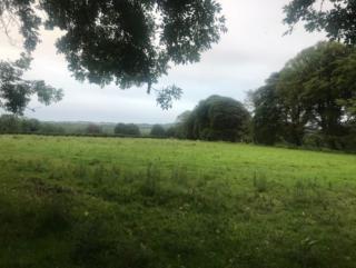 Field in Oughtagh | Carmel O'Rourke