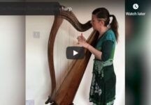 The Princess Royale' on Irish harp